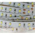 Tira LED 60 leds/mt  SMD2835  9,6w/mt.